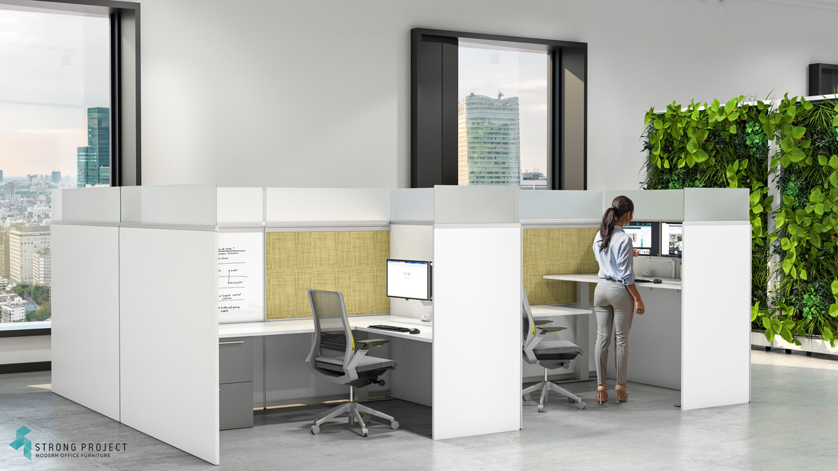 Private Sit-Stand Workstations