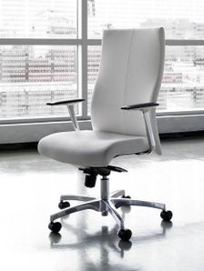 Contemporary Executive Office Chairs