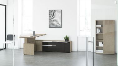 Electric Adjustable Desk