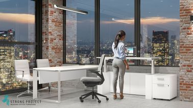 Adjustable Modern Office Desk