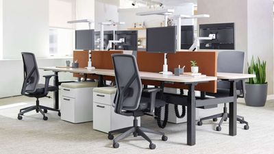 Contemporary Task Chair with Body Balance