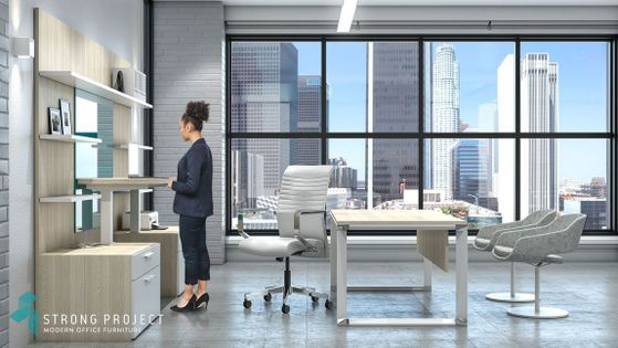 Modern Executive Desk Set