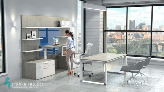 Sit-Stand Executive Office Suite Design