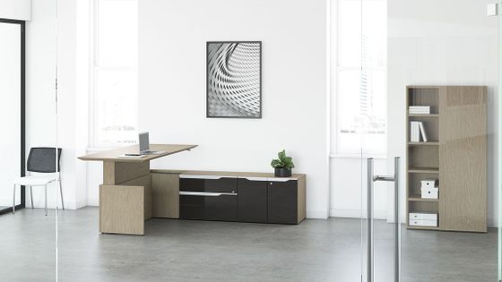 Modern Sit-Stand Executive Desks