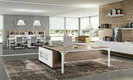 Cool Executive Office Desks